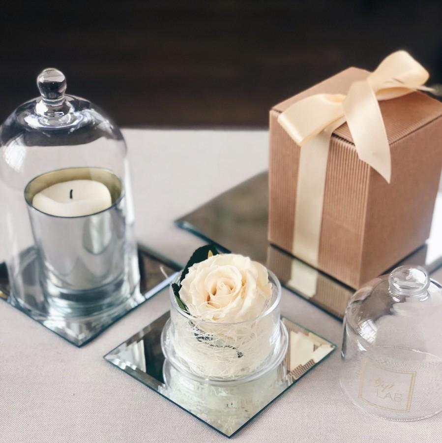 Balta / kreminė mieganti rožė stiklo inde su gaubtu
