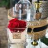 Raudonos miegančios rožės stiklo vazoje